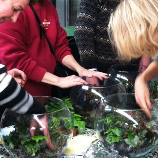 Terrarium Class in South Jersey